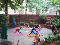 Yoga in the park, right outside the 40 Berkeley hostel in Boston, Massachusetts.