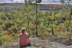 There are thousands of great spots to view fall colour in Ontario's cottage country - here are just 7 suggestions to help you plan your getaway. Ontario Cottages, Algonquin Park, Recreational Activities, Trip Planning, Trail, Scenery, Canada, Roads, Colours