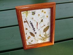 Turn scrap paper into one-of-a-kind, handmade paper projects with flower petals, leaves and even seeds from your garden. Money Making Crafts, Organic Art, Seed Paper, Hacks Diy, How To Make Paper, Flower Petals, Dried Flowers, Projects To Try, Paper Crafts