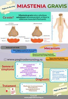 Metabolism, Myasthenia Gravis, Biology, Anatomy