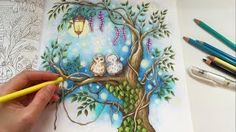 Sharing How I Color Tree Owls Lantern The Night Sky With Prismacolor Premier Colored Pencils Coloring Book Romantic Country Second Tale By Eriy