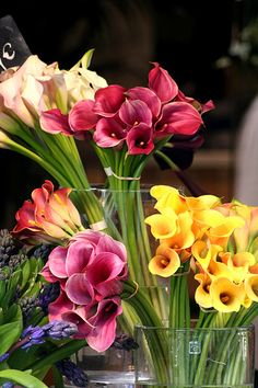 Few fresh cut flowers offer the elegance and versatility of the calla lily. If you are designing your own wedding bouquet, centerpieces or arrangements, the calla lily will provide all of the style… My Flower, Fresh Flowers, Beautiful Flowers, Deco Floral, Arte Floral, Calla Lillies, Calla Lily, Flower Market, Trees To Plant