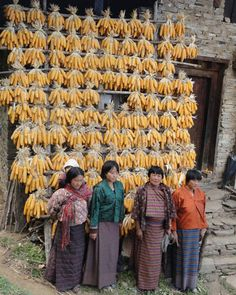 Women in rural Bhutan are the custodians of foods and seeds, and keep bunches of local maize stored in a traditional system in Trashigang. ©IFAD/Vincent Darlong