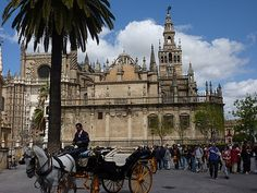 Cathedral of Seville, Spain. only complete with the PRE horse carriages :)