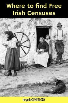 Where to find Free Irish Censuses. A look at the surviving census records to help you with your Irish genealogy research. Free Genealogy Sites, Genealogy Research, Family Genealogy, Rotterdam, Family Tree Research, Genealogy Organization, Family History, Ireland, Bespoke