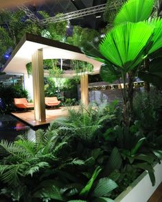 Andy Sturgeon Landscape and Garden Design, 2012 Singapore Garden Festival gold award and horticultural excellence award
