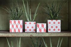 Serax | Maceteros hechos con baldosas cerámicas • Planters made of ceramic tiles, beautiful!