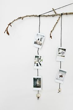 polaroid-fotos-deko-zweige-wandschmuck-bilder-haengen-gewicht