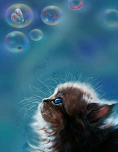 Mesmerized by Bubbles.