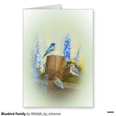 "Bluebird Family Greeting Card. Personalize this card with your own text. Optional background colors available. Designed from my original oil painting ""Bluebird Family And Delphiniums"" by Johanna Lerwick Wildlife/Nature Artist."