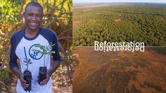 Tentree: Marca de moda sustentável que planta dez árvores para cada item vendido - Stylo Urbano