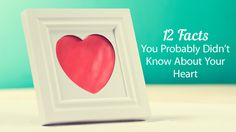 12 Facts You Probably Didn't Know About Your Heart