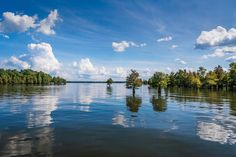 The South's Best Swimming Holes and Waterfalls: Lake Marion in Santee State Park