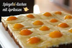 Spiegelei-Kuchen mit Aprikosen - Kochliebe