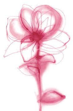 watercolor flowers | Watercolor Flower Patterns