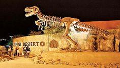 En este museo puedes ver los restos de un tironosaurio rex  un hadrosaurio un quetzalcoatlus  conocelos.