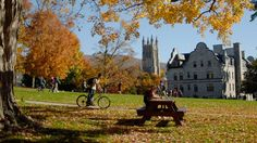 Williams College, Massachusetts. Not only considered the best college in the US, but a beautiful town and campus too. Quintessential ivory tower!