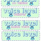 Full color, owl themed CHAMPS cards for Conversation Cards, Voice Levels, Behavior Modification, Grade 1, Classroom Management, Champs, Owls, School Stuff, Education