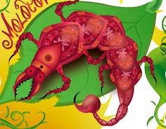 """Check out new work on my @Behance portfolio: """"Insecto frijolero"""" http://on.be.net/124JKLH"""