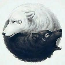 Image result for opposites wolves drawing