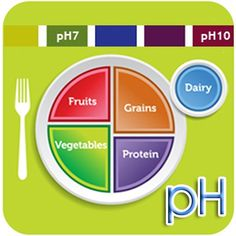 Nutrition Unit: Food Pyramid (Choose My Plate) home-ec-lesson-plan-ideas Paleo Diet Meal Plan, Low Carb Diet, Diet Meal Plans, Calorie Diet, Paleo Plan, Med Diet, Calorie Intake, Meal Prep, Nutrition Education