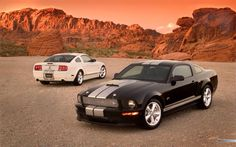Ford Mustang 350Gt Shelby Edition