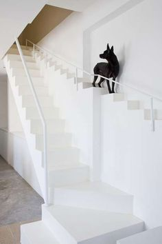 pet specific stairs