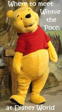 A list of all of the Winnie the Pooh themed attractions, character meals, and activities at Disney World; see:http://www.buildabettermousetrip.com/pooh