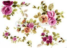 flores — Imagem Stock #9398660