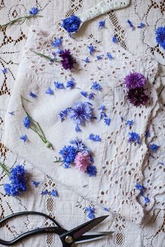 Edible Flowers: Cornflower