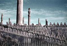 king-of-uruk:Apadana staircase, Persepolis, Iran. 5th century...