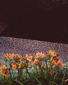 Colour matching in Toruń   #toruń  #modern #minimalmood #urbanscape #architecture #concrete #ifyouleavestagram #ifyouleave #architectural #archilovers #lucecurated  #photozine #minimalzine #paperjournalmag #rsa_minimal #gupmagazine #oftheafternoon #geometry #modern  #visualauthority  #opendoorsgallery #noicemag #lekkerzine #thespacesilike #unlimitedminimal #goingminimal #acanthusmagazine #jordanki #polisharchitecture