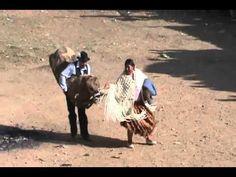 Corrida toros ilabaya - waca y cholita