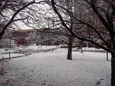 Buffalo State, winter