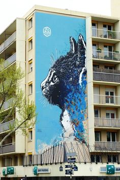 #C215 - street art - Paris 13 - boulevard Vincent Auriol http://www.widewalls.ch/artist/c215/ #widewalls #C215