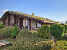 U Srubu Sychrov, Sychrov – ceny aktualizovány 2020 Cabin, House Styles, Home Decor, Decoration Home, Room Decor, Cabins, Cottage, Home Interior Design, Wooden Houses