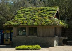 Green Roofs - Natural Landscaping, Gardening, and Landscape Design in the Catskills and Hudson Valley including Ulster County, Ellenville, New Paltz, Kingston, and Woodstock
