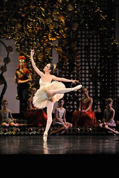 Lucinda Dunn as Princess Aurora in Stanton Welch's The Sleeping Beauty'.  A new production will form part of our 2015 season - a year of beauty!
