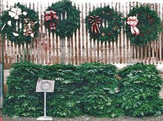 Wreaths for your front door or around the house at Hamilton Farms in Boonton Twp, NJ