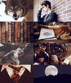 ➥ Remus Lupin « If you could only see the beast you've made of me I held it in but now it seems you've set it running free Screaming in the dark, I howl when we're apart drag my teeth across your chest to taste your beating heart »
