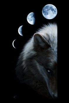 """Maybe the wolf is in love with the moon, and each night it cries for a love it can never touch"""