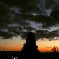 Moon Venus and a Tree