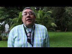 Video Curso Jardines Verticales Mexico 2013