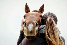 horse photography Horse gives equestrian a hug during equine photography shoot in Saratoga Springs NY Cute Horse Pictures, Horse Senior Pictures, Horse Photos, Senior Pics, Cute Horses, Pretty Horses, Horse Love, Beautiful Horses, Horse Girl Photography