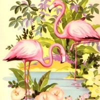 The pink flamingo is not just a fifties kitsch icon. It's also a popular art subject for those who like birdwatching or the Key West Florida lifestyle.    If...