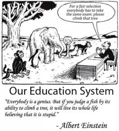 If you judge a fish by its ability to climb a tree...
