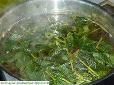 Sok z mięty :-) - Kulinarna Maniusia - blog kulinarny Healthy Drinks, Healthy Eating, Carmel Hair, Christmas Food Gifts, Seaweed Salad, Superfoods, Preserves, Herbalism, Remedies