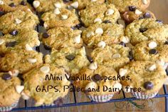 For Him and My Family: Gaps/Paleo Mini Vanilla Cupcakes -dairy free and gluten free