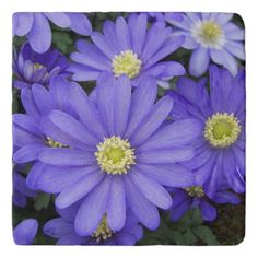 Purple Anemones Floral Trivet - spring gifts beautiful diy spring time new year