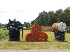 Corn Maze, Hay Bales, Happy Halloween, Acre, Virginia, Awesome, Animals, Pumpkin, Medium